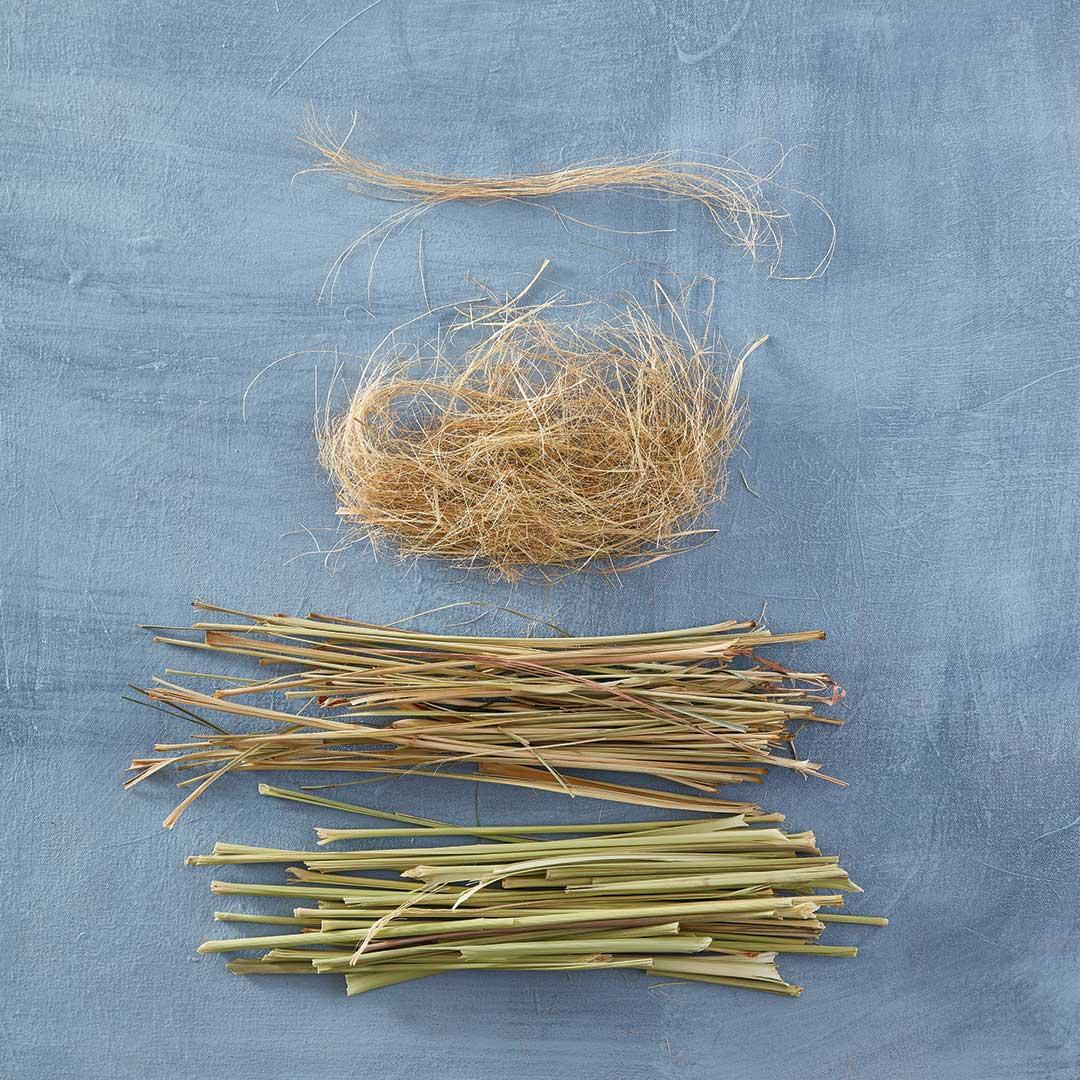 bast fibers