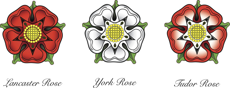 Representations of English-rose emblems. Following the Wars of the Roses, the red rose of the House of Lancaster and the white rose of the House of York were combined to make the dual-colored Tudor rose. Photo by Rixipix/GettyImages.