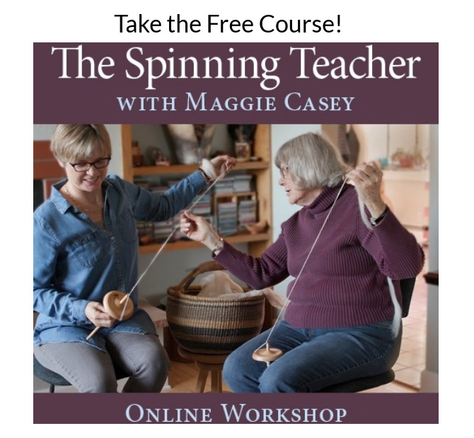 Learn how to spin or to teach others to spin with The Spinning Teacher with Maggie Casey: Online Workshop