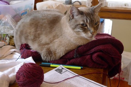 Back by popular demand, Knitting Daily's Online Editor, Kathleen Cubley, shares step-by-step instructions for different stretchy bind-offs in knitting.