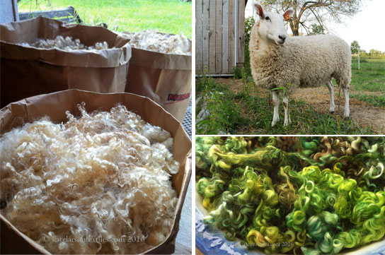 Clockwise from left: Three bags full on shearing day at Kate's farm. Kate keeps a happy flock of Border Leicesters in Indiana. Can you resist? Photos by Kate Larson.