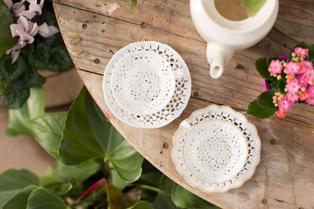 Faylinn Teacups top