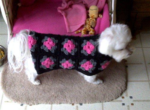 Free Crochet Granny Square Dog Sweater : Granny Square Dog Coat - Interweave