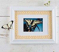 Filet Crochet Frame Toni Rexroat