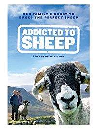 Addicted to Sheep