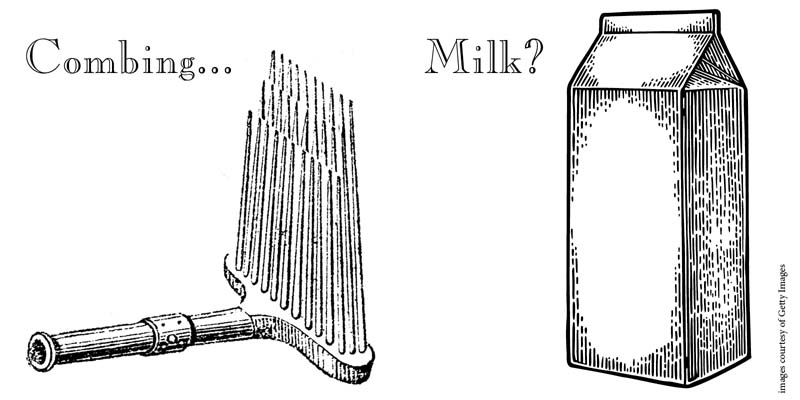 Combing Wool with Milk (yes, it's a thing)