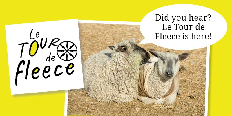 Tour de Fleece: Three Tips at the Starting Line