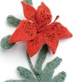 Flower_160