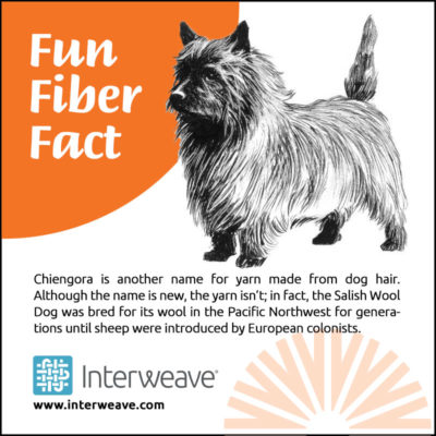 Chiengora is another name for yarn made from dog hair. Although the name is new, the yarn isn't; in fact, the Salish Wool Dog was bred for its wool in the Pacific Northwest for generations until sheep were introduced by European colonists.