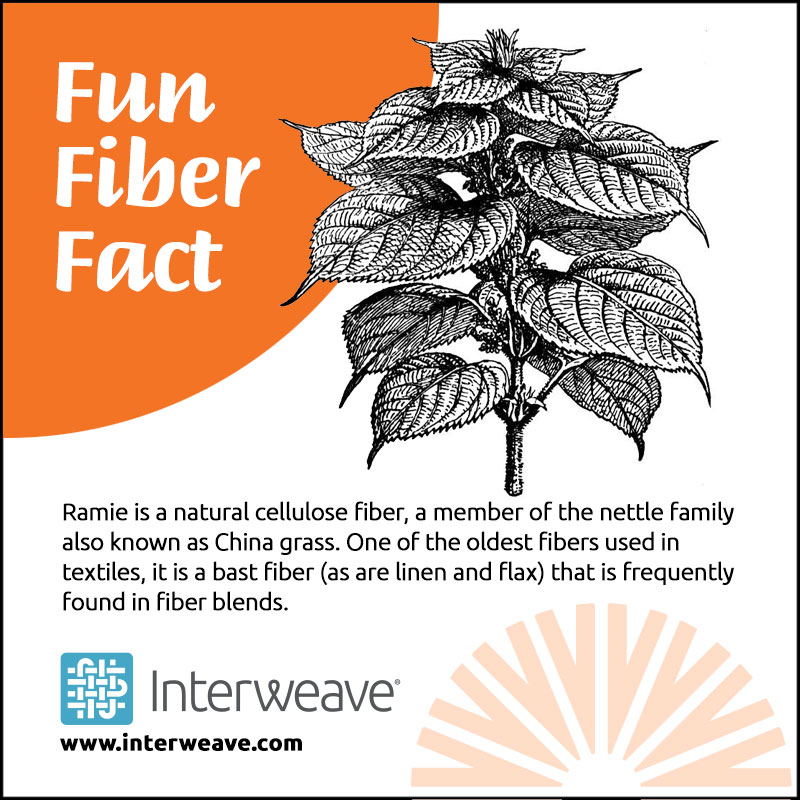 Fiber Fact: What is Ramie?