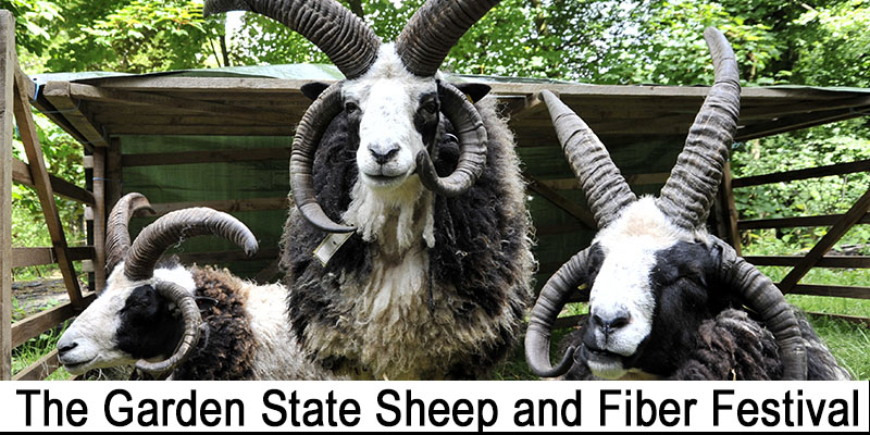 The Garden State Sheep and Fiber Festival