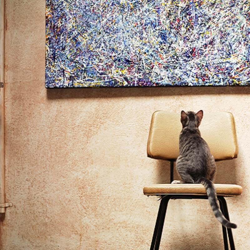 weaving: Tabby cat sitting on chair, looking at painting. GettyImages