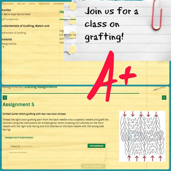 Grafting-graphic