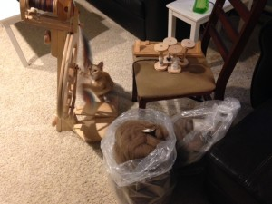 Fleeces and bobbins, ready for serious winter spinning! (One obstacle not addressed in Get More Spun is kitten-wrangling.)