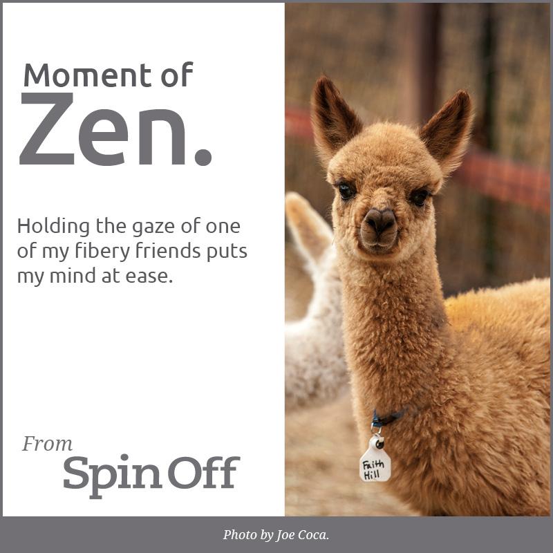 Moment of Zen: Gaze