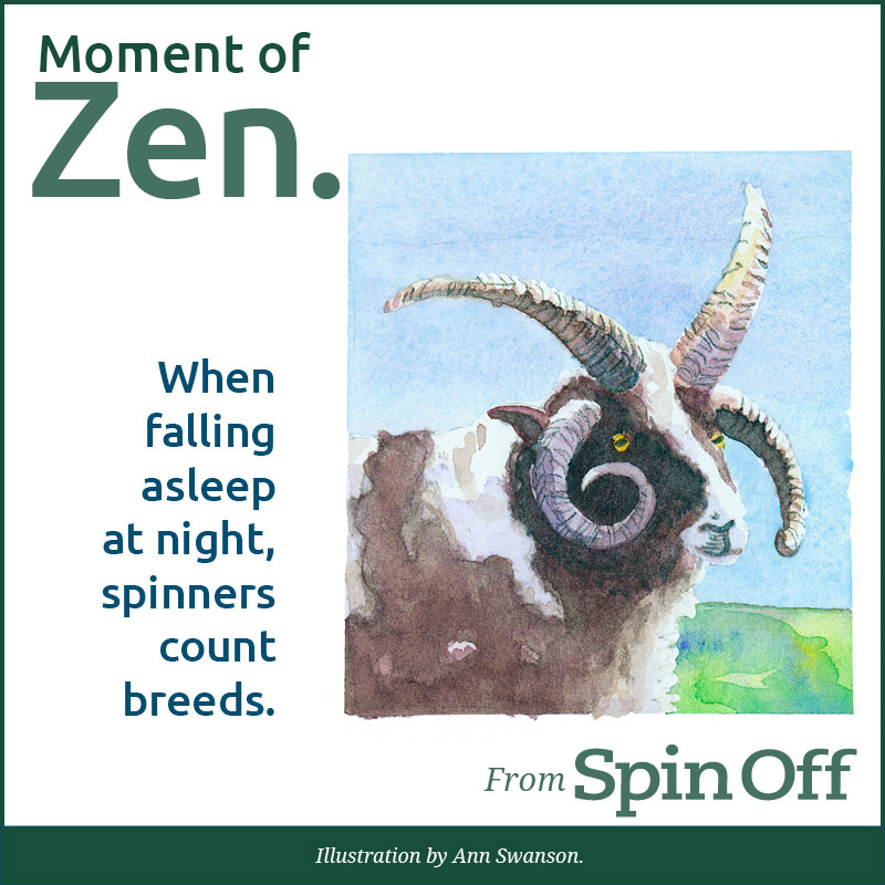 Moment of Zen: Counting Sheep When falling asleep at night, spinners count breeds. Illustration by Ann Swanson.