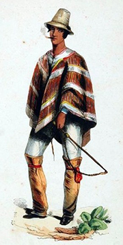 Chilean Man in Poncho