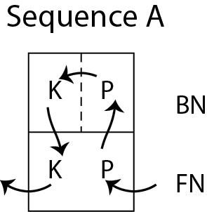 Sequence A