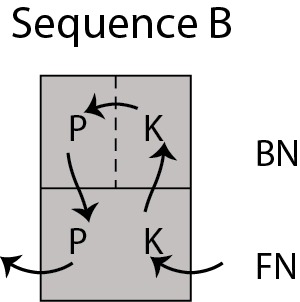 Sequence B
