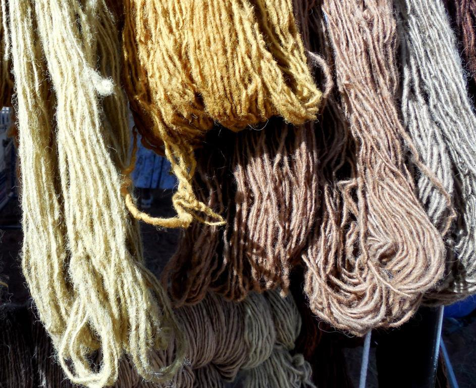 Handspun Navajo Churro yarn dyed with natural materials. Photo: Cindy Dvergsten.