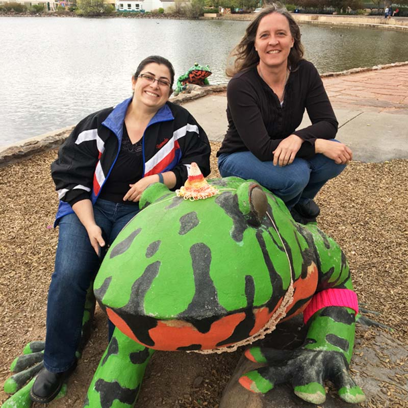 Susanna (left) and Dana (right) yarn bomb a frog.