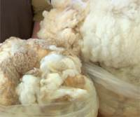 wool spinning classes