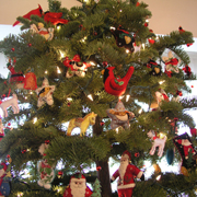 Madelyn's Tree