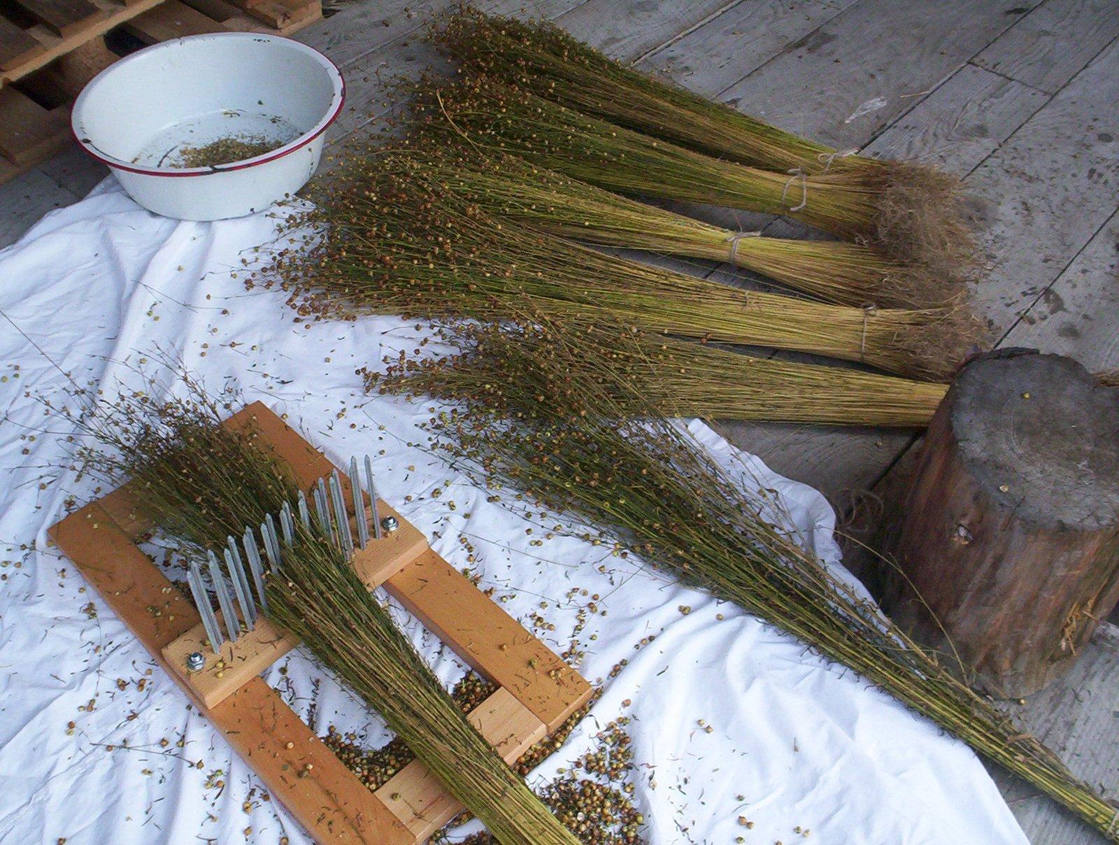 Processing flax. Photo courtesy of Vävstuga Weaving School.