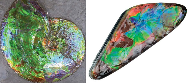 ammonite and ammolite cab, from Lapidary Journal Jewelry Artist, Jan/Feb 2017