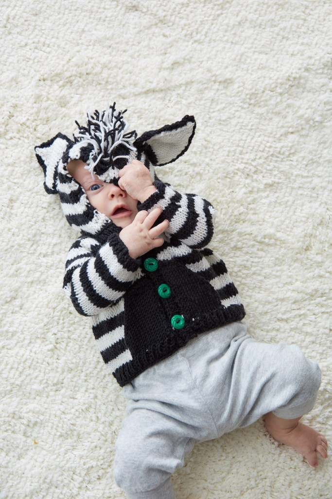 Little Animals Zebra 1