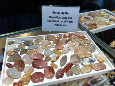 Bunga Agate Fossilized Coral at Tucson Gem Show. January 2017. Photo by Merle White.