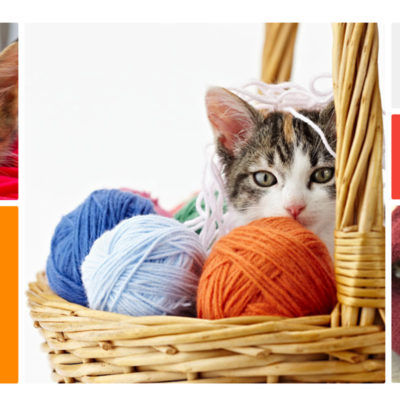 Ideas for Charity Knitting - Snuggles Project