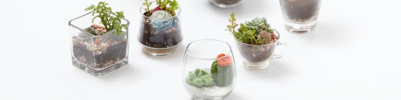 Free Amigurumi Crochet Terrarium