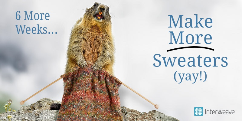 All Hail the Groundhog, Fan of Sweaters