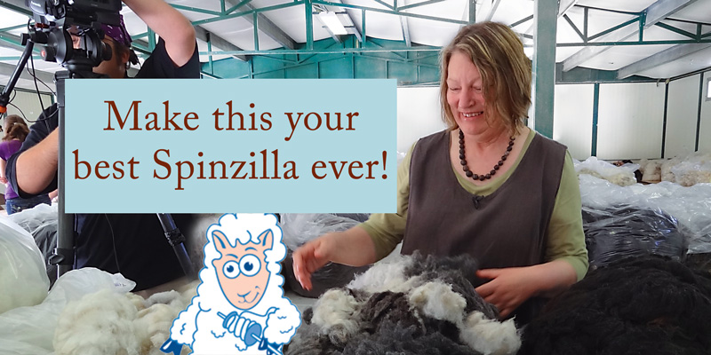 9 Things You Can't Miss During Spinzilla