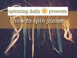 Learn how to spin yucca fibers in this FREE eBook on alternative and natural fibers.