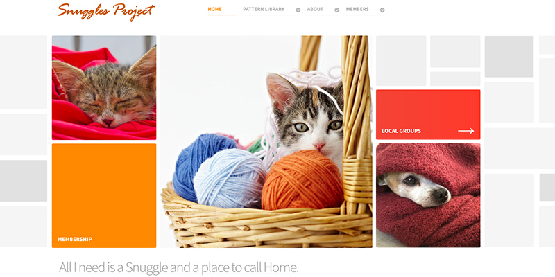 The Snuggles Project – Giving Back to Our Furry Friends