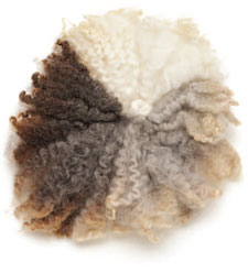 spinning wool for beginners