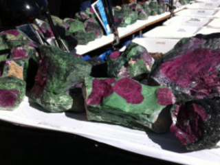 Ruby in Zoisite at the Tucson Gem Show. January 2017. Photo by Merle White.