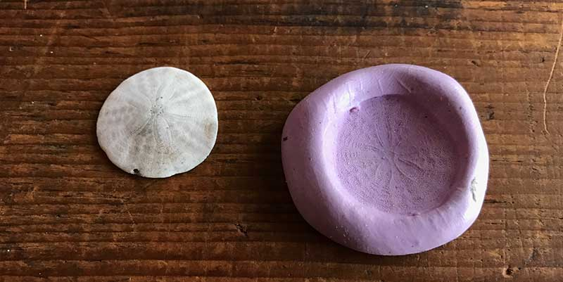 Jewelry Making: Bringing Nature Into the Studio. sand dollar and sand dollar mold