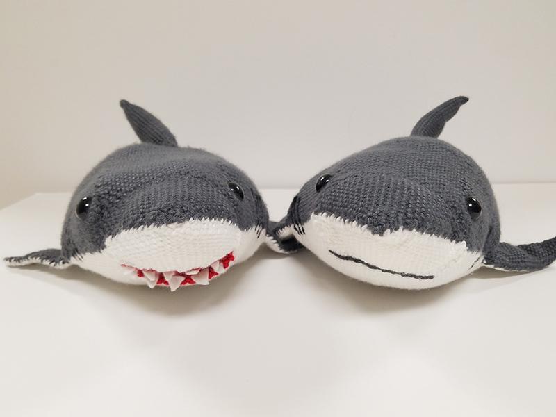 Shark by Deborah Bagley