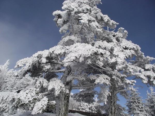 snowy-mountain2