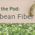 Silky Soy Fiber: Have You Tried It Yet?