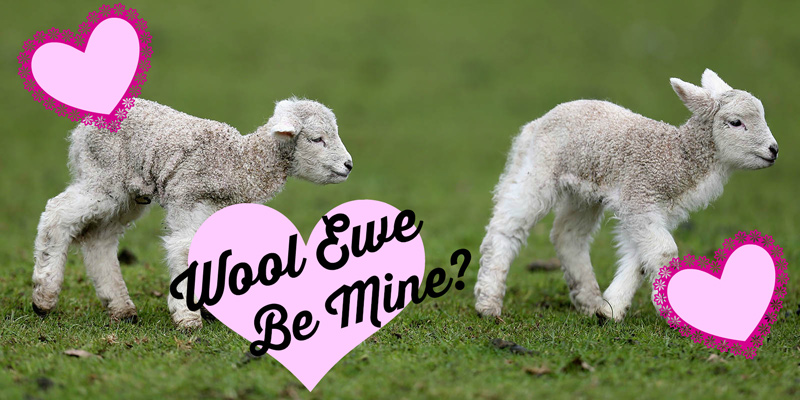Wool Be Great Together: Valentines for Spinners