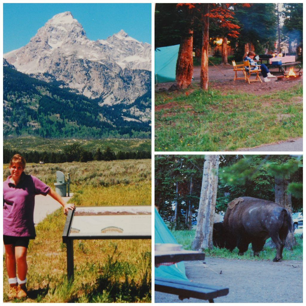 yellowstone_collage